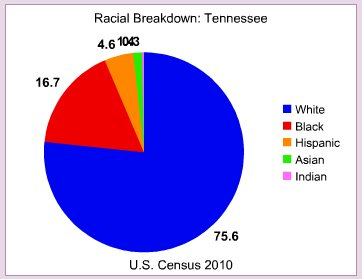 Racial breakdown in Tennessee