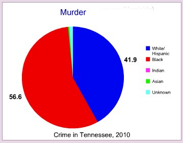 Murder rate by race in Tennessee